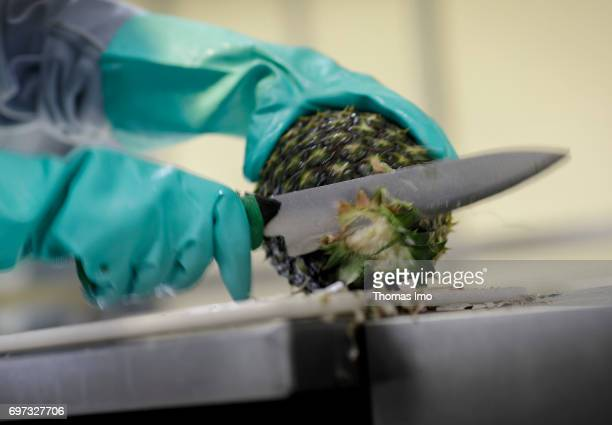 A pineapple is cut Production of pineapple juice at beverages manufacturer Kevian Kenya Ltd on May 18 2017 in Thika Kenya