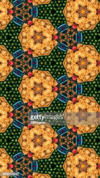 Pineapples and Watermelon kaleidoscope pattern