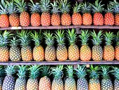 33 pineapples in 3 rows on roadside stall for sale