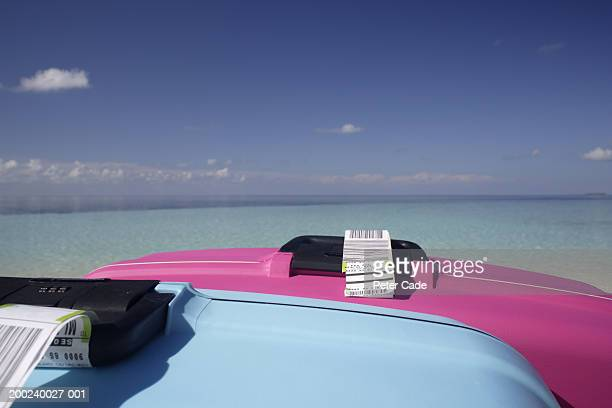 Pink and blue suitcases on beach