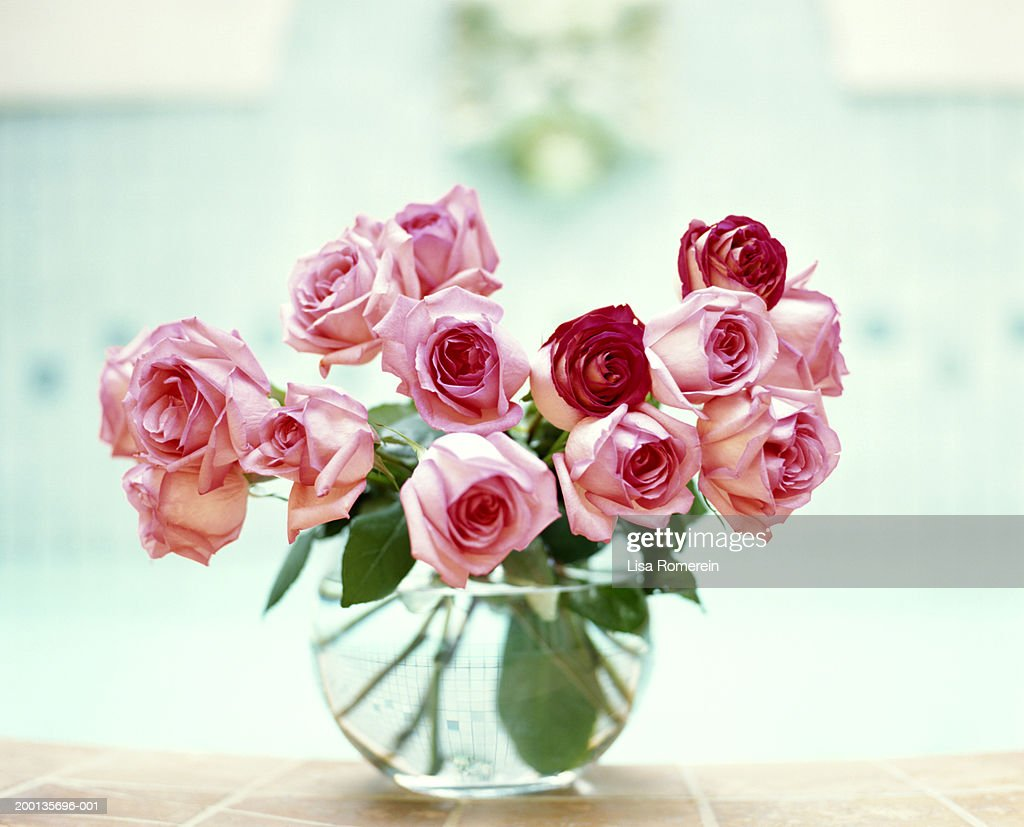 Pink and red rosses in vase : Stock Photo