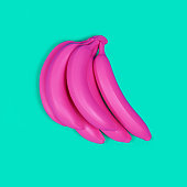Pink bananas on a turquoise background. Fashionable minimalism.