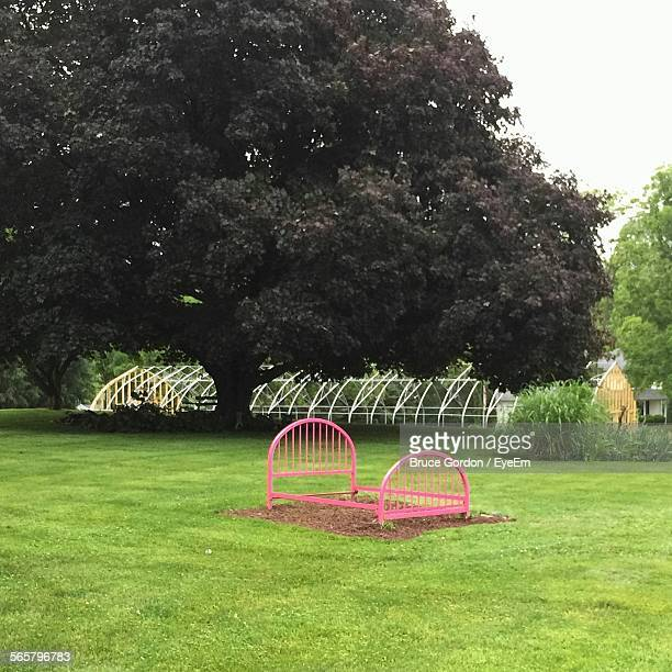 Pink Bed Frame On Lawn