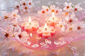 Pink candles and Yoshino cherry blossom flowers floating on water