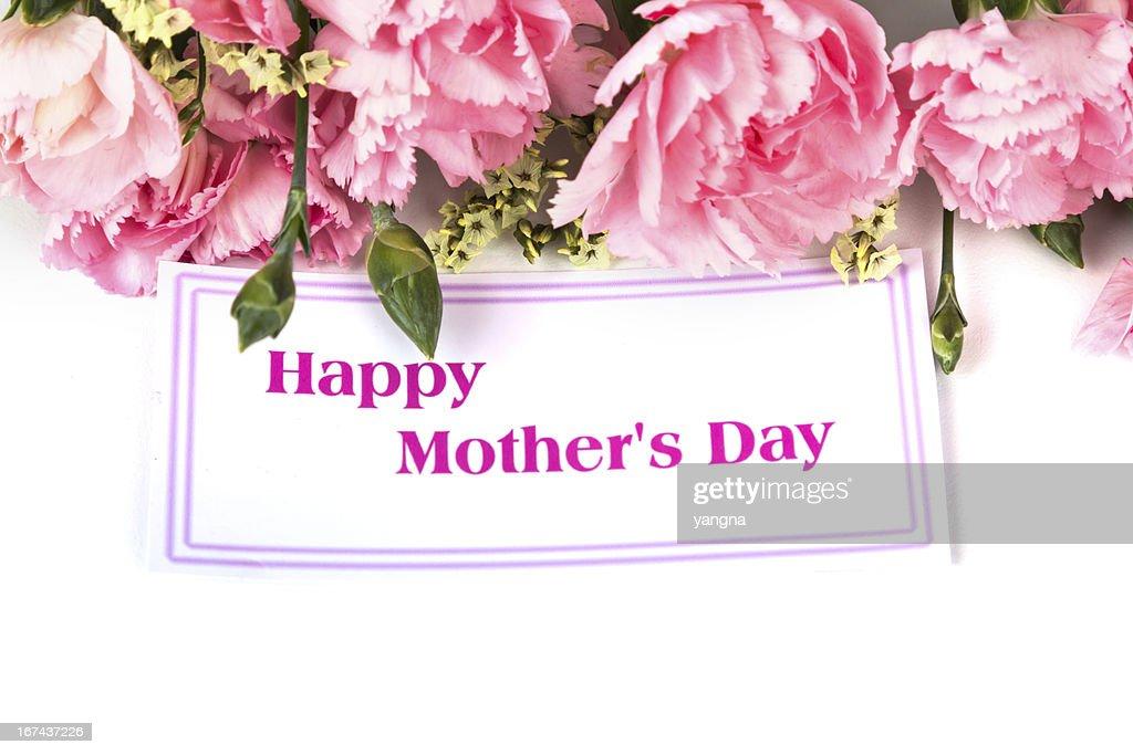 Rosa carnations y el día de la madre de regalos : Foto de stock