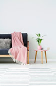 Plant and books on wooden stool next to sofa with pink blanket in cozy living room with carpet