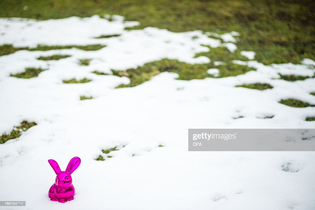 A pink Easter bunny is decorated in a snow covered garden in Busbach, southern Germany, on March 30, 2013.