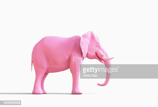 Pink elephant statue