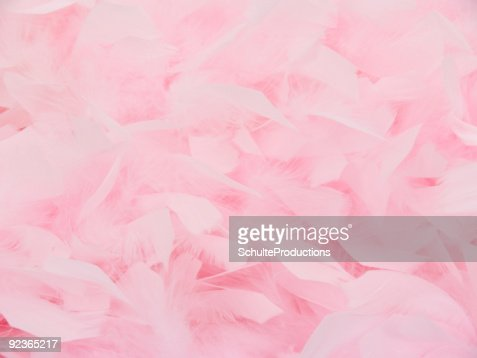 Pink Feather Boa2