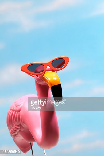 Pink flamingo wearing sunglasses against blue sky