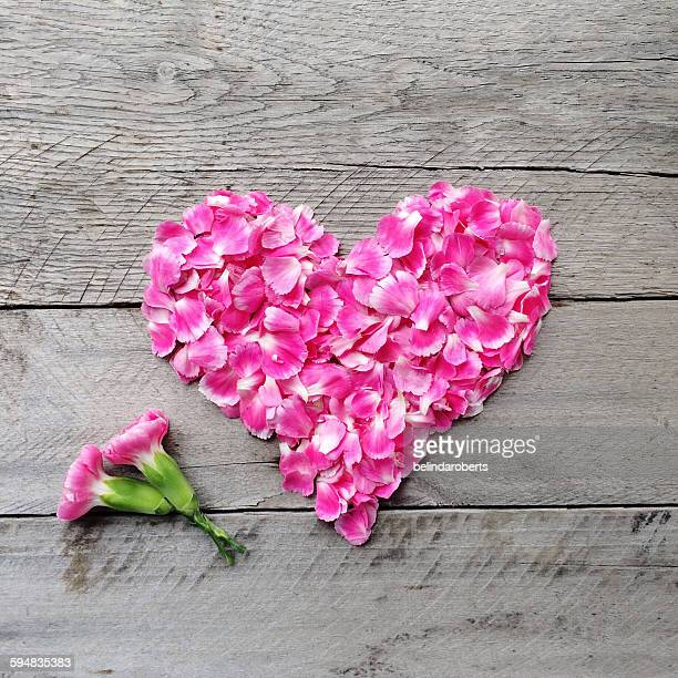 Pink floral heart made from carnation flowers