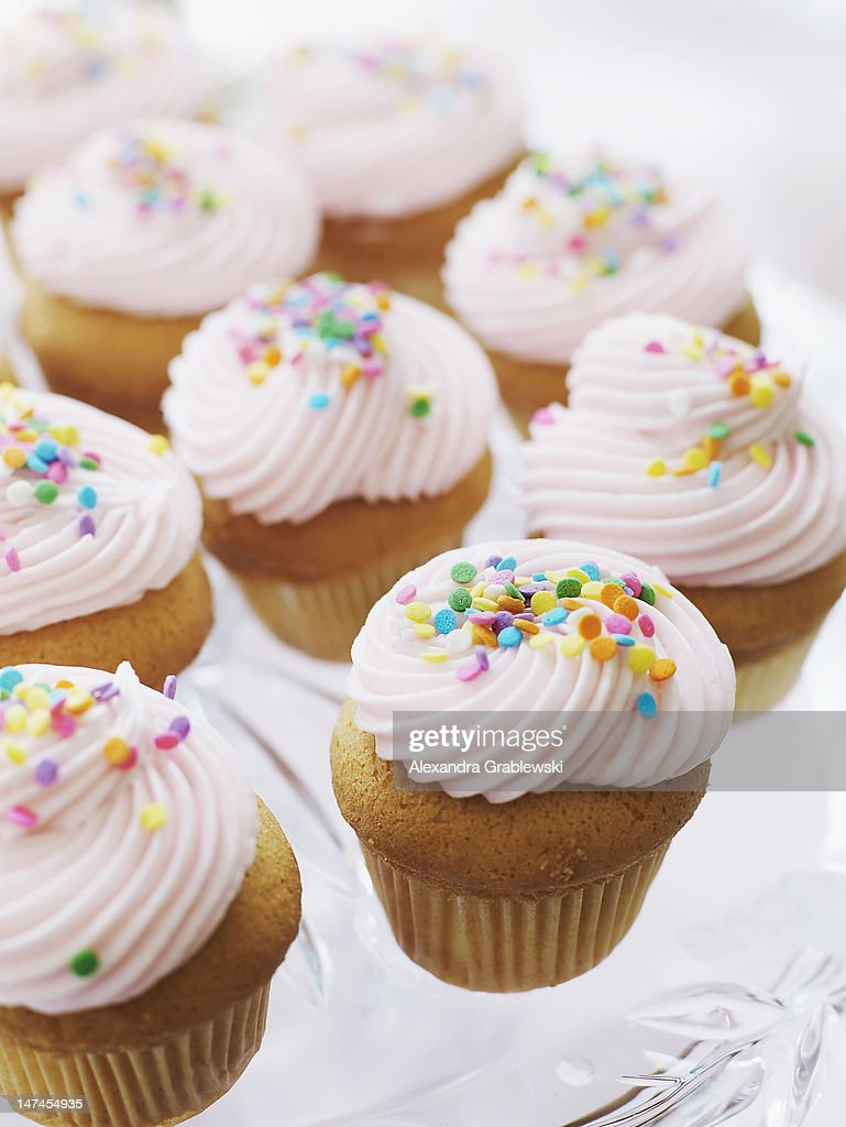 Pink Frosted Cupcakes : Stock Photo