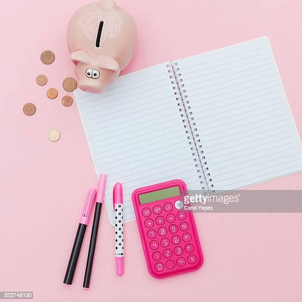 pink home finance