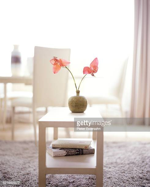 Pink orchids in vase on contemporary coffee table