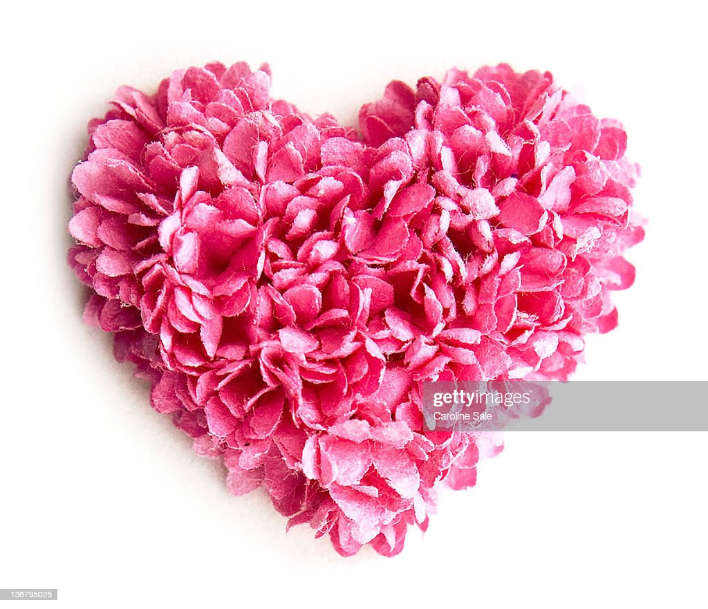 Pink petal heart : Stock Photo