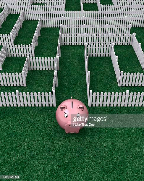 Pink Piggy Bank escaping from a picket fence maze