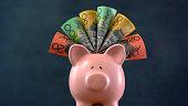 Pink Piggy bank money concept on dark blue background, stuffed with Australian cash.