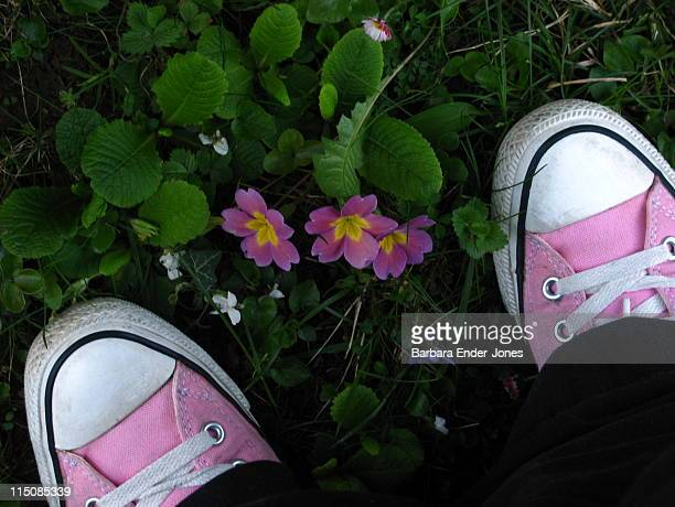 Pink primroses and pink sneakers.