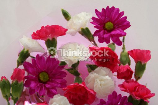 Pink purple and white flower arrangement with painted effect stock pink purple and white flower arrangement with painted effect stock photo mightylinksfo