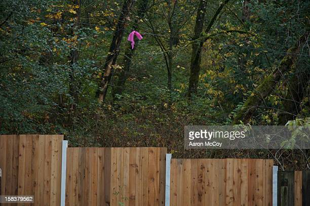 Pink ribbon in a tree next to a fence