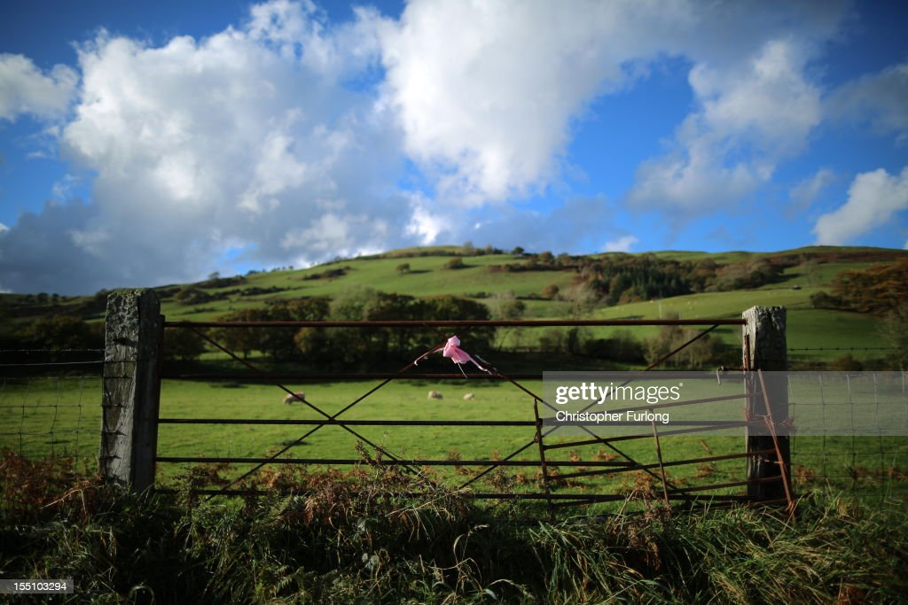 A pink ribbon tied to a gate denotes the continuning search for missing 5 year old April Jones on November 1, 2012 in Machynlleth, Wales. Coral and Paul Jones, the parents of April, have thanked the public for their 'kind words and sentiments' which have provided support in the month that has passed since her abduction.
