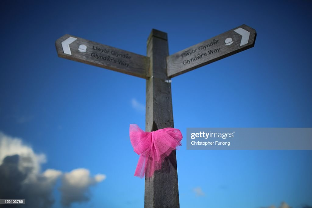 A pink ribbon tied to a road sign denotes the continuning search for missing 5 year old April Jones on November 1, 2012 in Machynlleth, Wales. Coral and Paul Jones, the parents of April, have thanked the public for their 'kind words and sentiments' which have provided support in the month that has passed since her abduction.