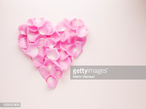 Pink rose petals forming heart-shape : Stock Photo