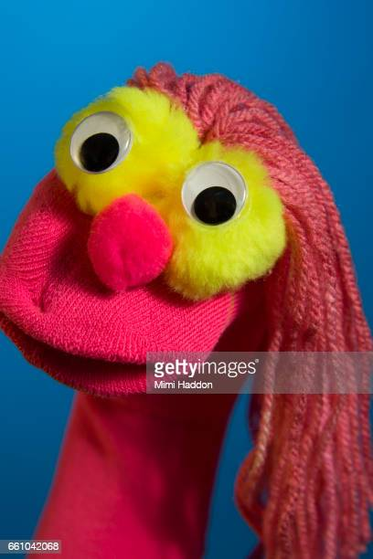 Pink Sock Puppet on Blue Seamless Looking at Camera