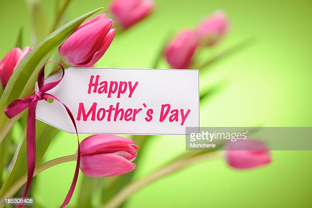 Pink tulips on green with mothers day card