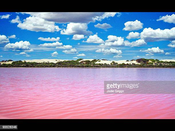 Pink Water and White Clouds
