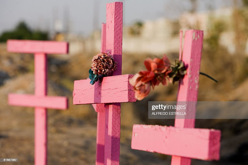 Pink wooden crosses are seen in the place where the corpses of eight murdered women were found in 2001 in Ciudad Juarez state of Chihuahua north...