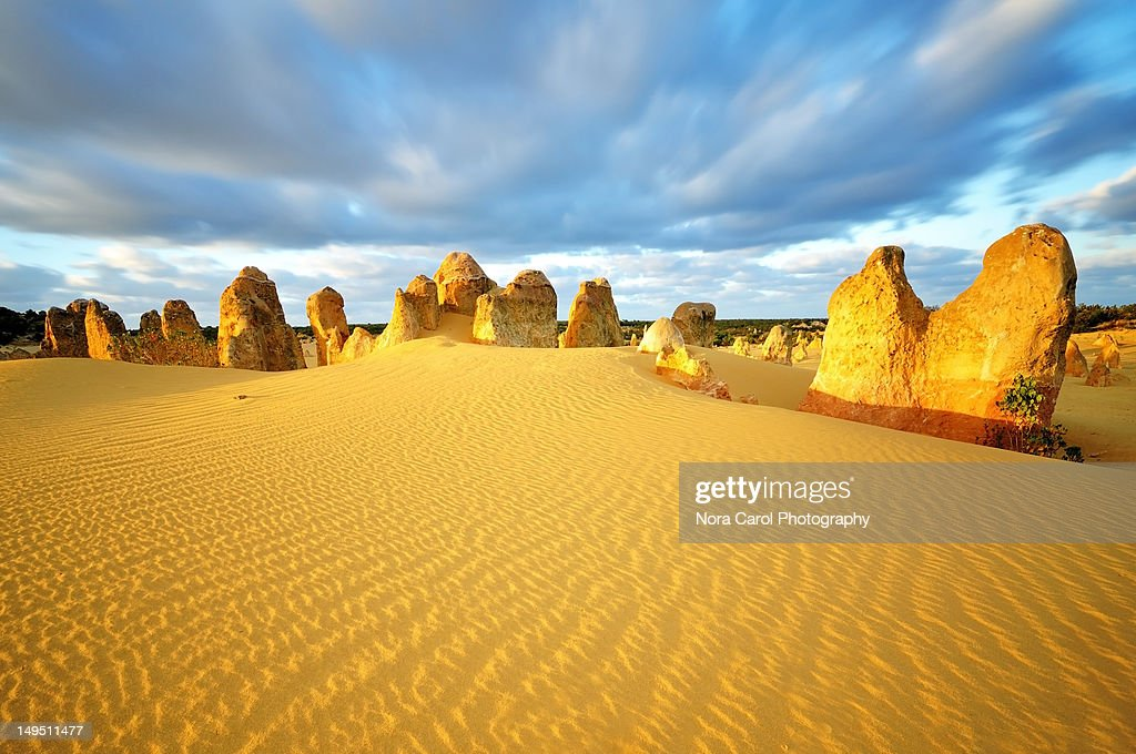 Pinnacles Desert : Stock Photo