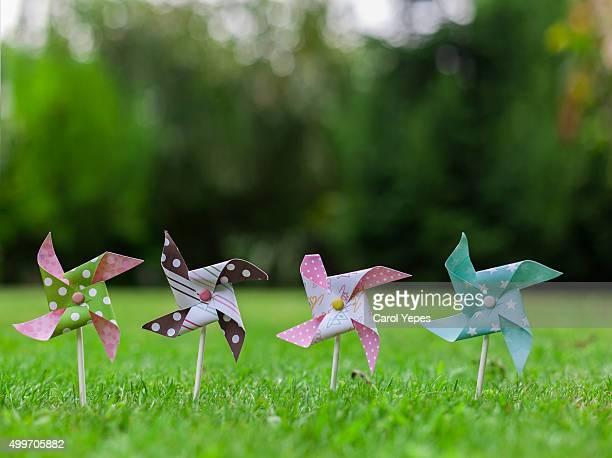 pinwheels in flied