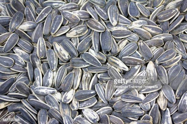 pipas , sunflower seeds