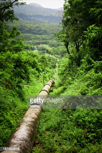 pipeline in forest