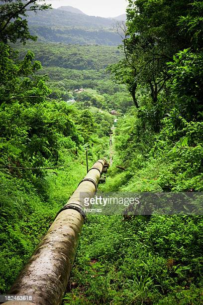 pipeline im Wald