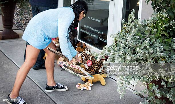 Piper Hoppe straightens out a stuffed lion placed in front of River Bluff Dental on July 29 2015 in Bloomington Minn owned by Dr Walter Palmer who is...