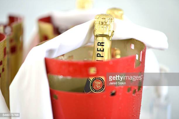 PiperHeidsieck Champagne at the Royal Academy America Summer Brunch at the PollockKrasner House on July 10 2016 in East Hampton New York