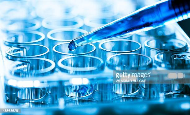 Pipette and microtubes