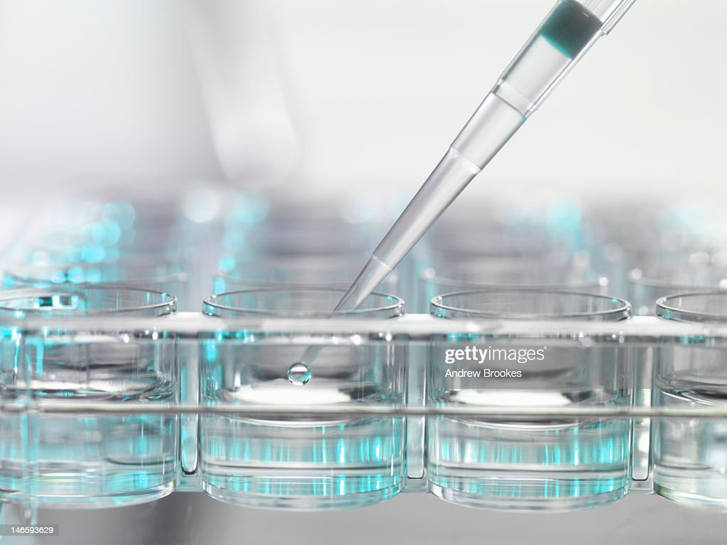 Pipette dropping liquid in clear jars : Stock Photo