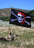 Pirate flag at the beach on July 16 2009 in Rhodes Greece Rhodes is the largest of the Greek Dodecanes Islands