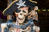 Pirate skeleton fstened to post with manacle and skeleton bird and golden tooth