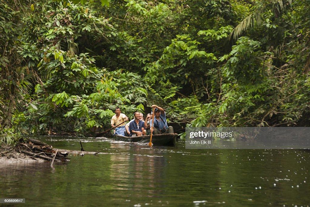 Pirogue exploring Amazon rainforest