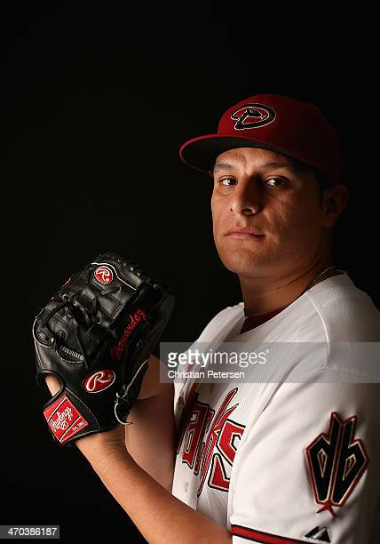 Pitcher David Hernandez of the Arizona Diamondbacks poses for a portrait during spring training photo day at Salt River Fields at Talking Stick on...