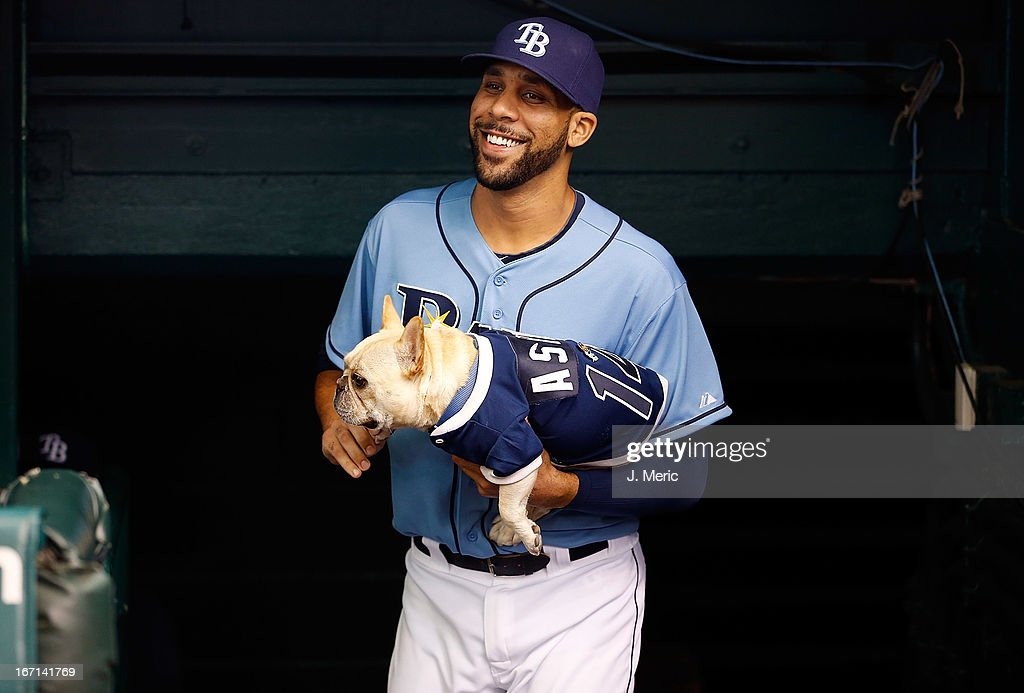 Pitcher <a gi-track='captionPersonalityLinkClicked' href=/galleries/search?phrase=David+Price+-+Baseball+Player&family=editorial&specificpeople=4961936 ng-click='$event.stopPropagation()'>David Price</a> #14 of the Tampa Bay Rays brings his dog Astro out onto the field just before the start of the game against the Oakland Athletics at Tropicana Field on April 21, 2013 in St. Petersburg, Florida.