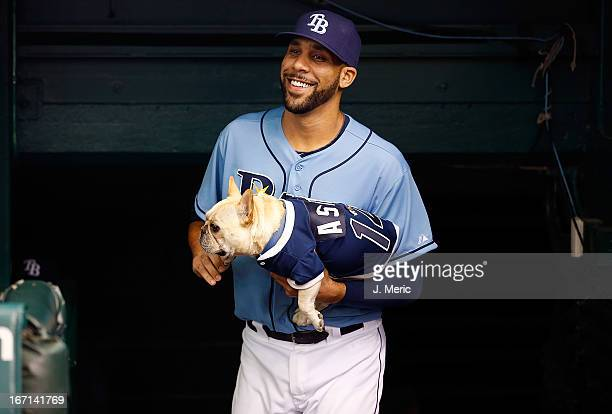 Pitcher David Price of the Tampa Bay Rays brings his dog Astro out onto the field just before the start of the game against the Oakland Athletics at...