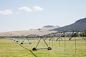 Pivot Irrigation System in use on a farm