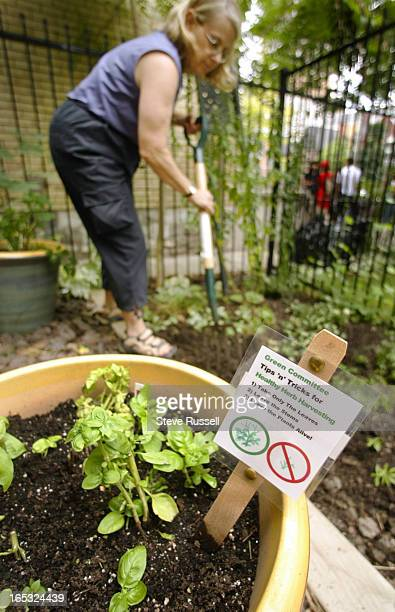 PLACE07/26/04Debra Appleton works the wild flower garden next to the community herb garden at Celebrity Place located at 77 Maitland Place in the...