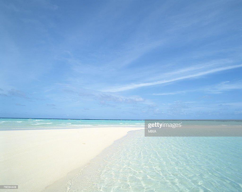 Placid seascape in Maldives : Stock Photo