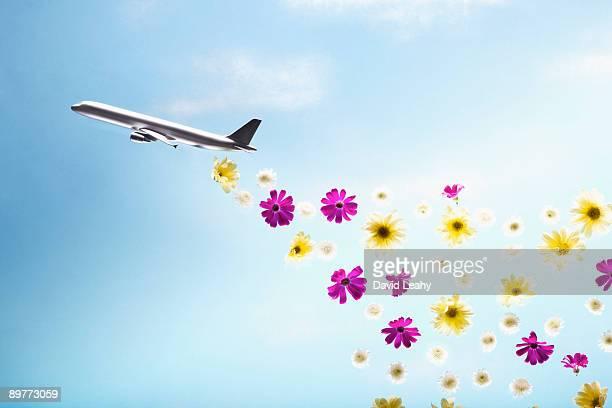 A plane emitting flowers
